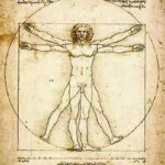 Functional Anatomy for Yoga Teachers