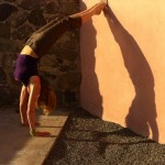 Infinite Yoga Teacher Dana Rae Pare - Supported Handstand/Shoulder Opener