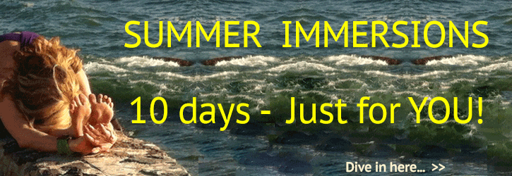 Summer/Winter Immersions