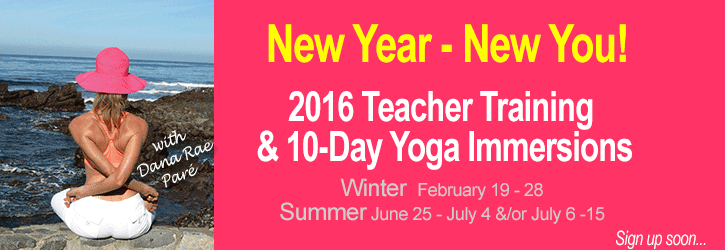 Infinite Yoga's 200hr Nationally Certified Teacher Training* with Dana Rae Paré