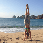 The Roots of Balance - Holiday Handstand Yoga Focus with Dana Rae Paré