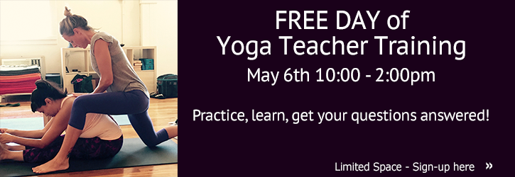 <center>FREE DAY of Summer Teacher Training</br>with Dana Rae Paré</center>