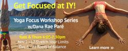 Yoga Focus Workshop Series